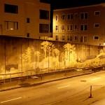 Reverse Graffiti Project. Quand le graffiti devient écolo.